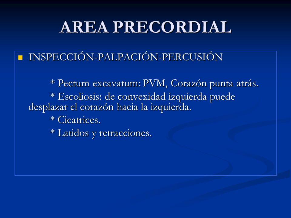AREA PRECORDIAL: Latido apexiano Normal: línea medio clavicular, 4-5 EIC, extensión de 2-3 cm., no sostenido y de poca amplitud.