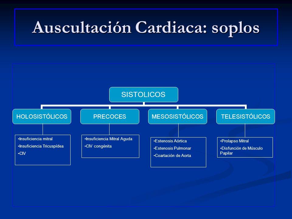 Auscultación Cardiaca: soplos SISTOLICOS HOLOSISTÓLICOSPRECOCESMESOSISTÓLICOSTELESISTÓLICOS Insuficiencia mitral Insuficiencia Tricuspídea CIV Insufic