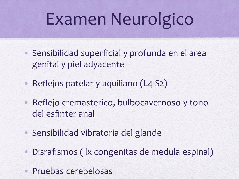 Examen Neurolgico Sensibilidad superficial y profunda en el area genital y piel adyacente Reflejos patelar y aquiliano (L4-S2) Reflejo cremasterico, b