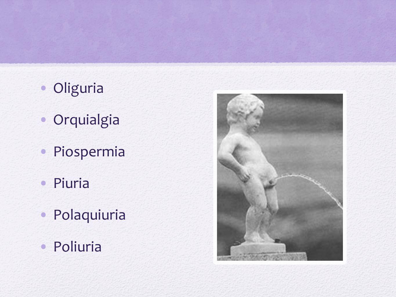 Poliuria nocturna Quiluria Uretrorragia Uretrorrea Virilizacion