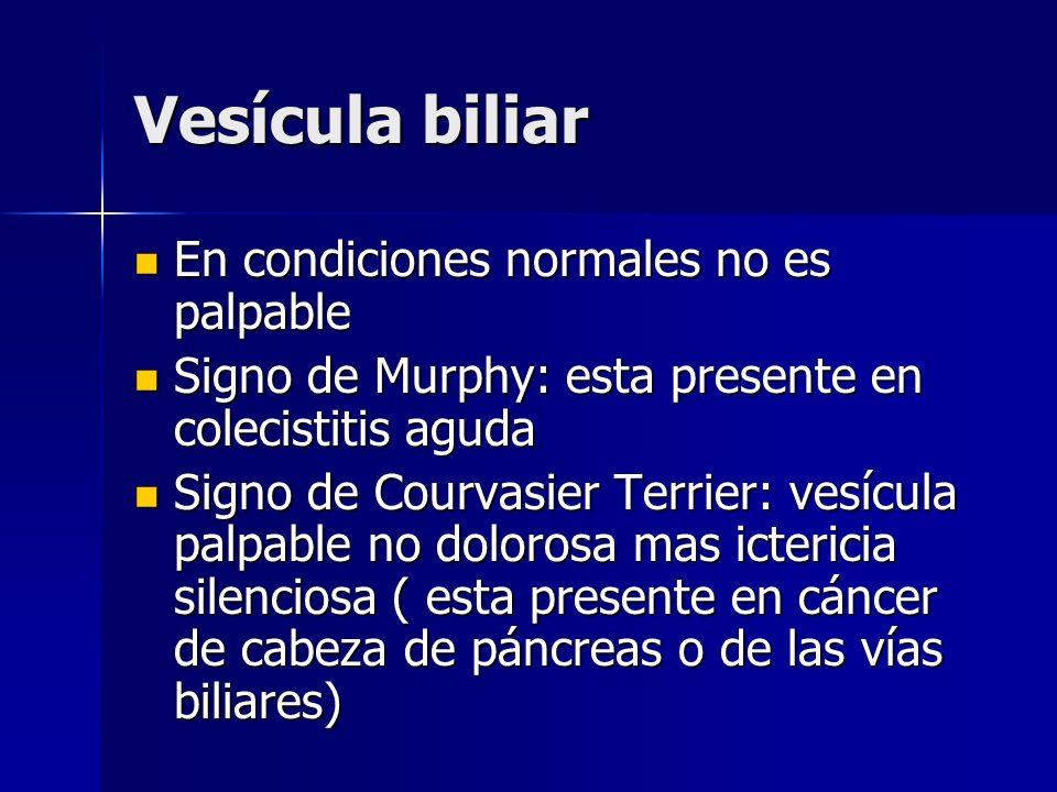 Vesícula biliar En condiciones normales no es palpable En condiciones normales no es palpable Signo de Murphy: esta presente en colecistitis aguda Sig