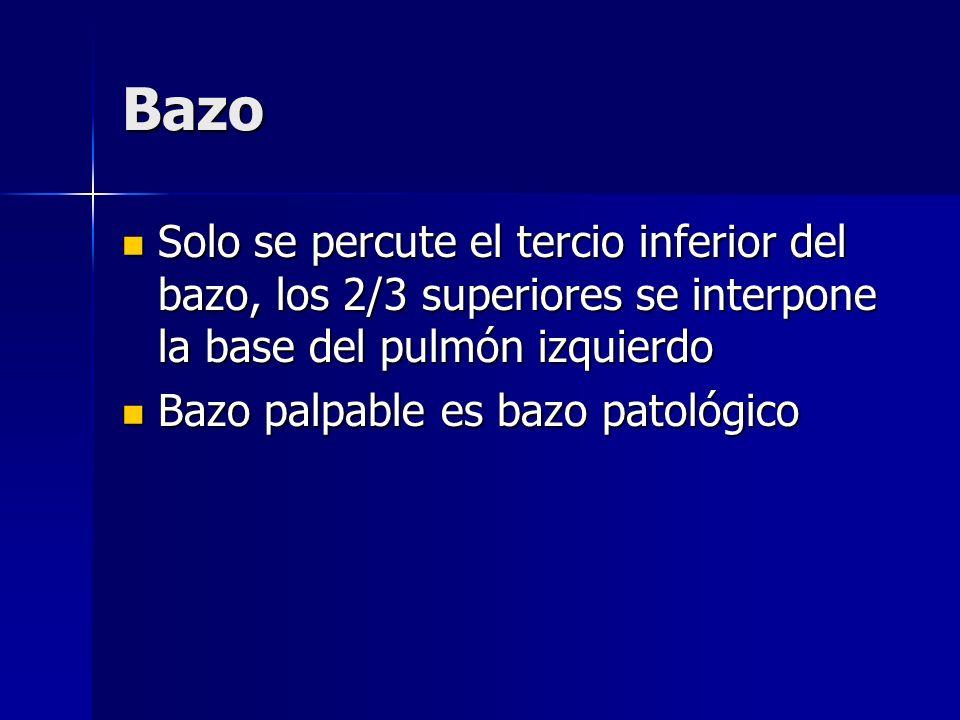 Bazo Solo se percute el tercio inferior del bazo, los 2/3 superiores se interpone la base del pulmón izquierdo Solo se percute el tercio inferior del