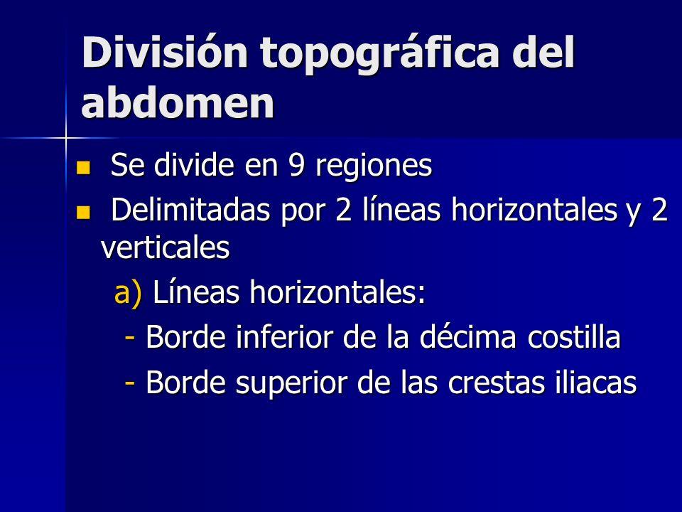 División topográfica del abdomen Se divide en 9 regiones Se divide en 9 regiones Delimitadas por 2 líneas horizontales y 2 verticales Delimitadas por