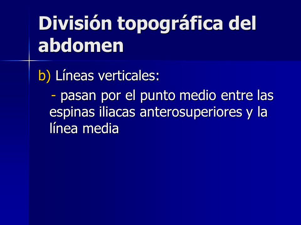 División topográfica del abdomen b) Líneas verticales: - pasan por el punto medio entre las espinas iliacas anterosuperiores y la línea media - pasan
