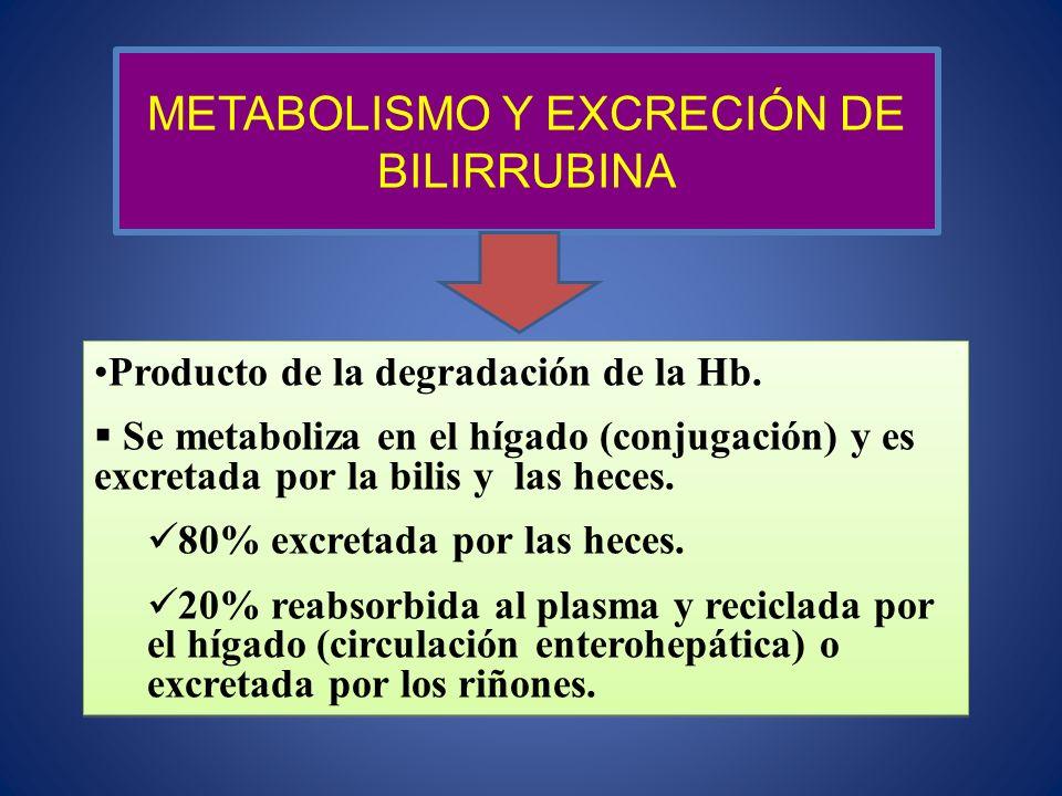 Producto de la degradación de la Hb. Se metaboliza en el hígado (conjugación) y es excretada por la bilis y las heces. 80% excretada por las heces. 20
