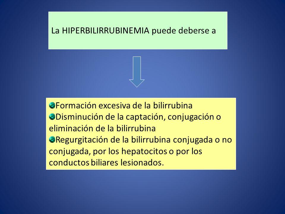 La HIPERBILIRRUBINEMIA puede deberse a Formación excesiva de la bilirrubina Disminución de la captación, conjugación o eliminación de la bilirrubina R