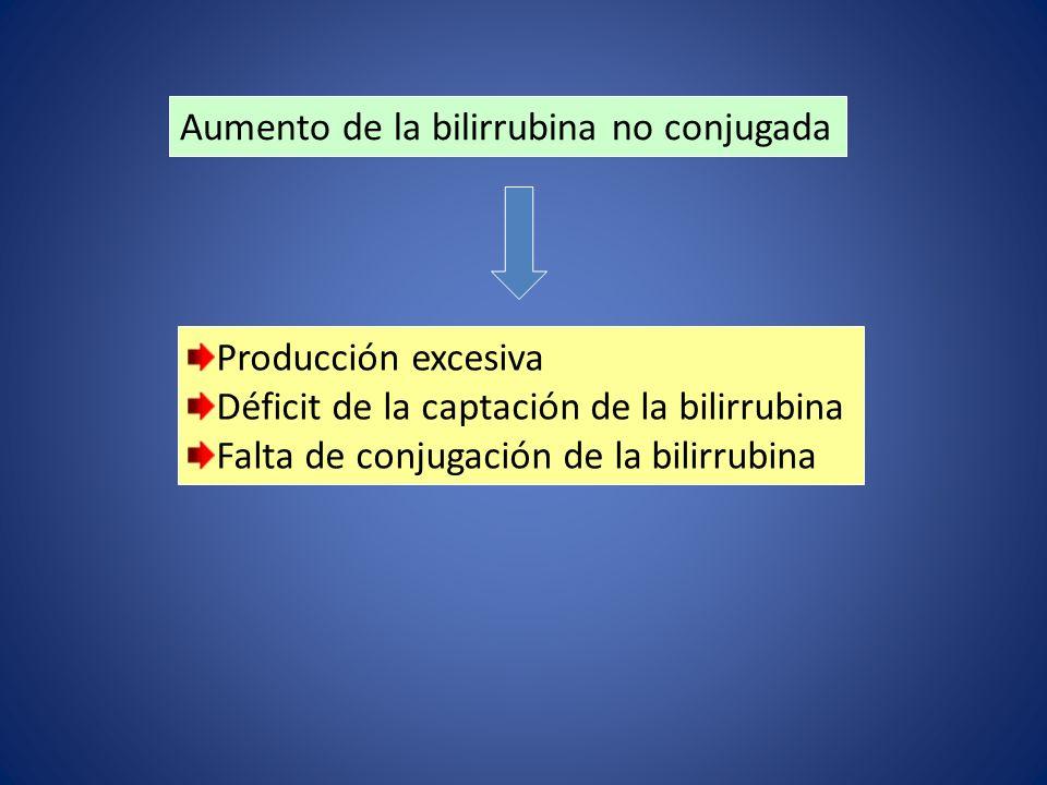 Aumento de la bilirrubina no conjugada Producción excesiva Déficit de la captación de la bilirrubina Falta de conjugación de la bilirrubina