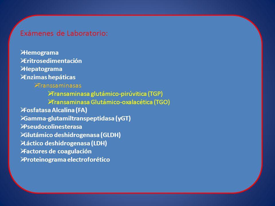 Exámenes de Laboratorio: Hemograma Eritrosedimentación Hepatograma Enzimas hepáticas Transsaminasas Transaminasa glutámico-pirúvitica (TGP) Transamina