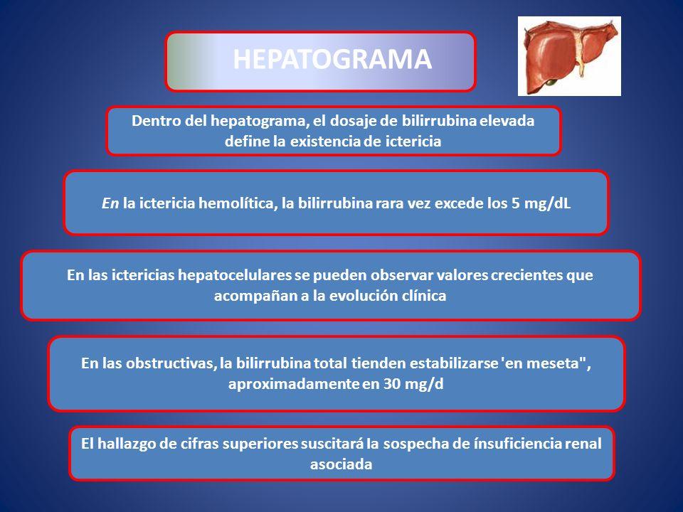 Dentro del hepatograma, el dosaje de bilirrubina elevada define la existencia de ictericia HEPATOGRAMA En las ictericias hepatocelulares se pueden obs