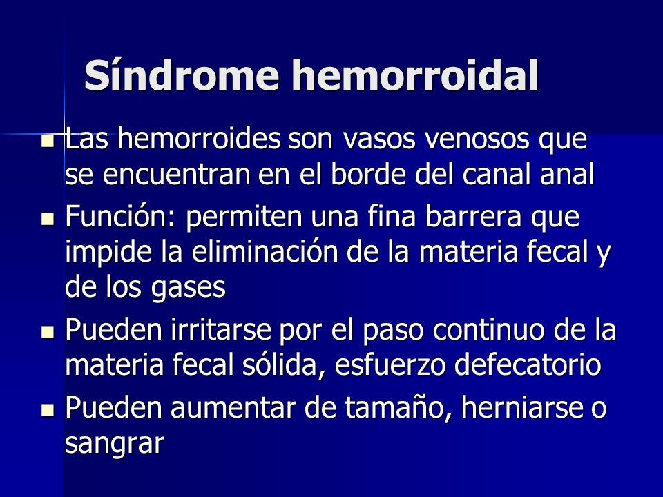 Síndrome hemorroidal Las hemorroides son vasos venosos que se encuentran en el borde del canal anal Las hemorroides son vasos venosos que se encuentra
