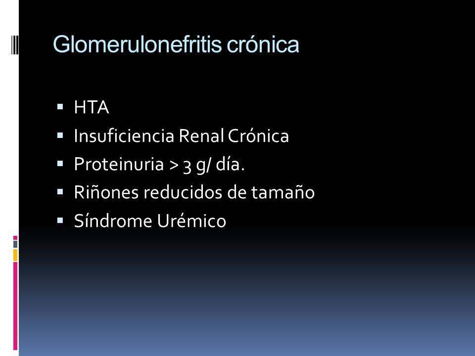 Glomerulonefritis crónica HTA Insuficiencia Renal Crónica Proteinuria > 3 g/ día. Riñones reducidos de tamaño Síndrome Urémico