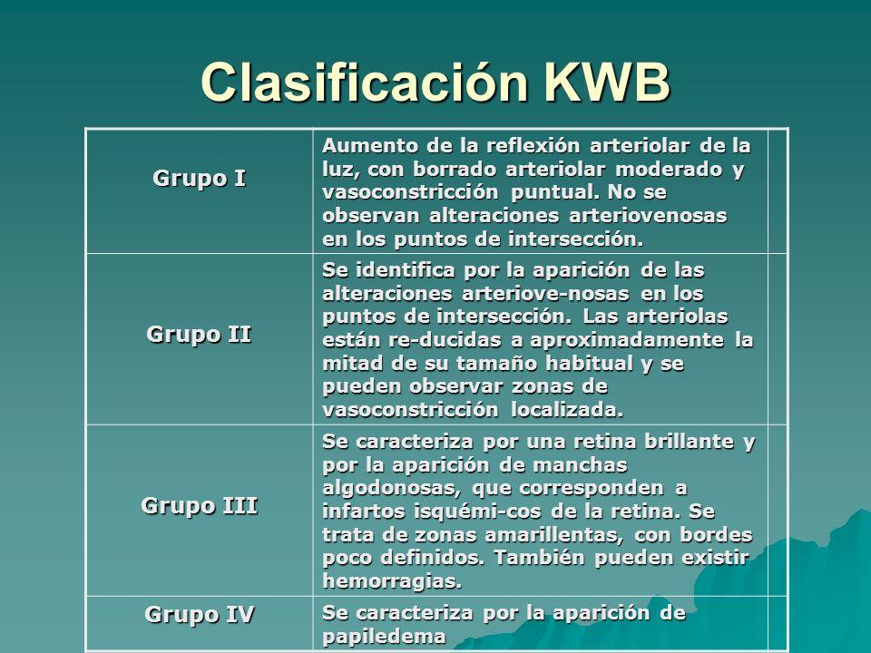 Clasificación KWB Grupo I Aumento de la reflexión arteriolar de la luz, con borrado arteriolar moderado y vasoconstricción puntual. No se observan alt
