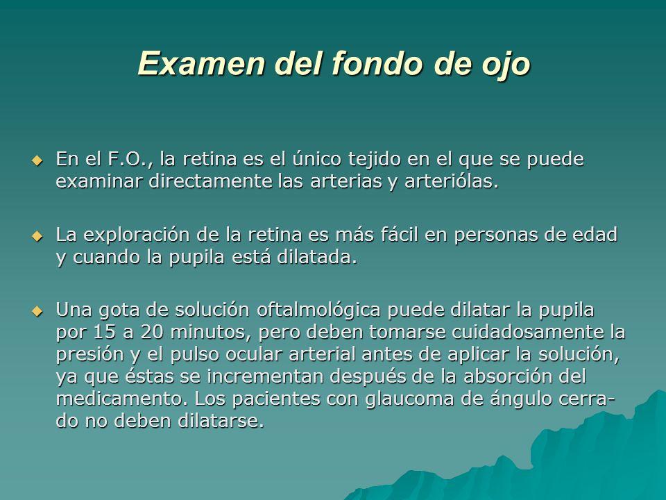 Examen del fondo de ojo En el F.O., la retina es el único tejido en el que se puede examinar directamente las arterias y arteriólas. En el F.O., la re