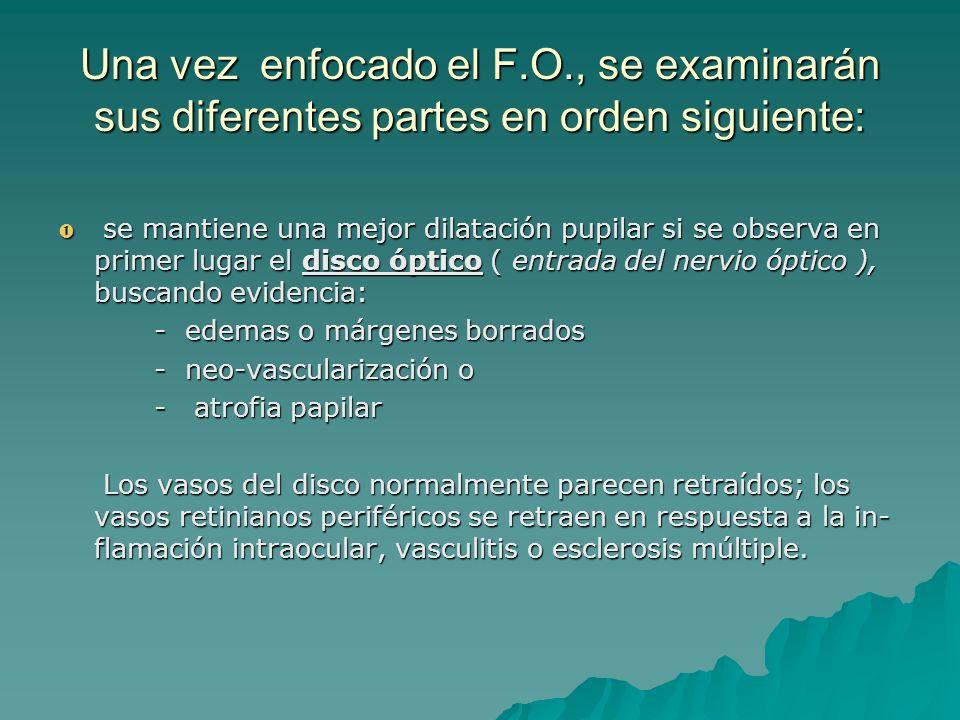 Una vez enfocado el F.O., se examinarán sus diferentes partes en orden siguiente: se mantiene una mejor dilatación pupilar si se observa en primer lug