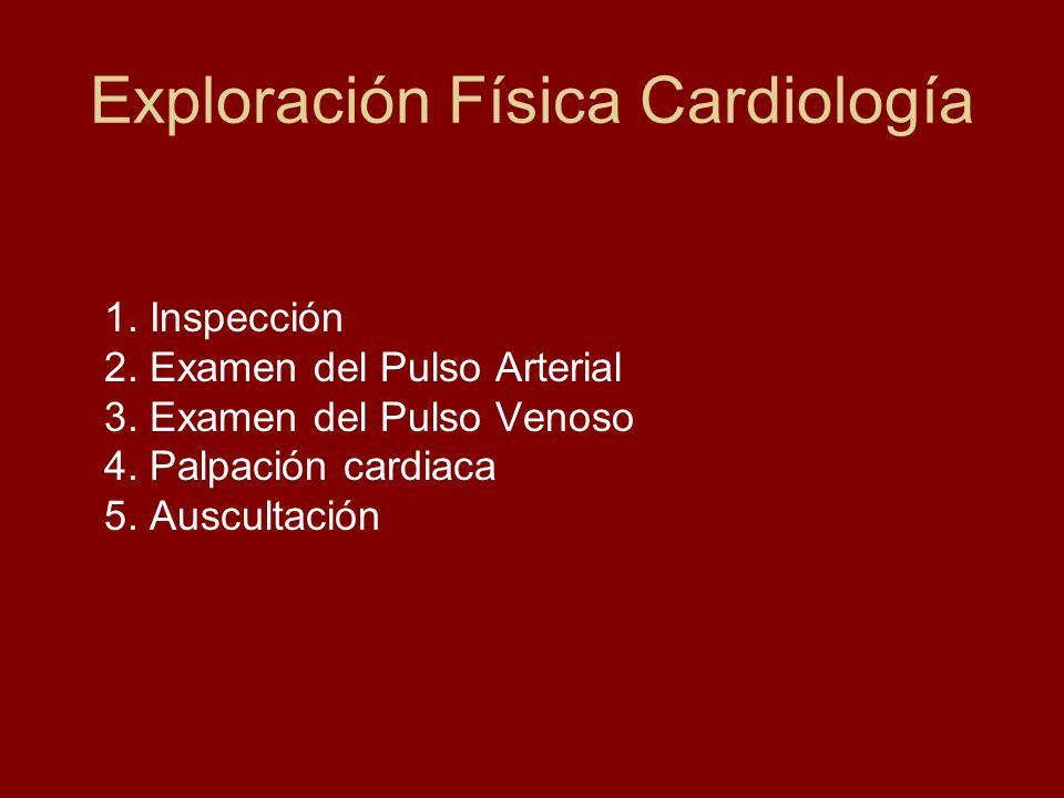 Exploración Física Cardiología 1. Inspección 2. Examen del Pulso Arterial 3. Examen del Pulso Venoso 4. Palpación cardiaca 5. Auscultación