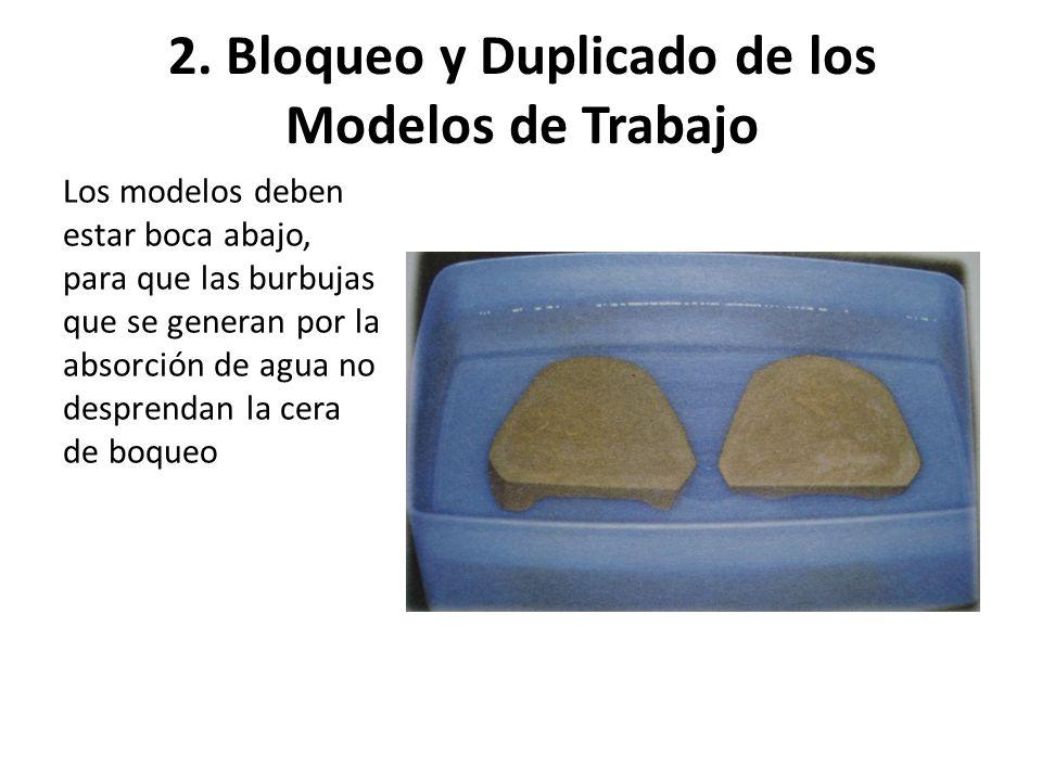 2. Bloqueo y Duplicado de los Modelos de Trabajo Los modelos deben estar boca abajo, para que las burbujas que se generan por la absorción de agua no