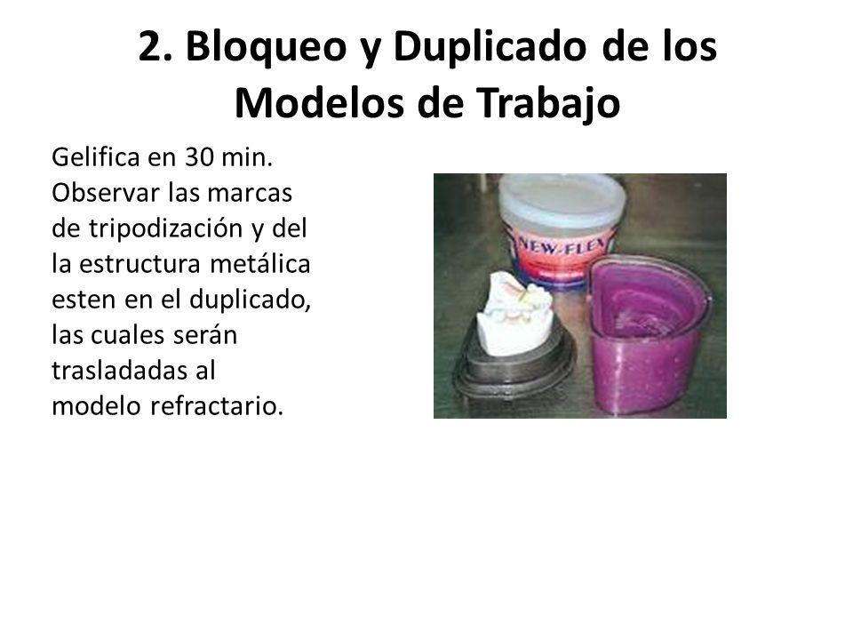 2. Bloqueo y Duplicado de los Modelos de Trabajo Gelifica en 30 min. Observar las marcas de tripodización y del la estructura metálica esten en el dup