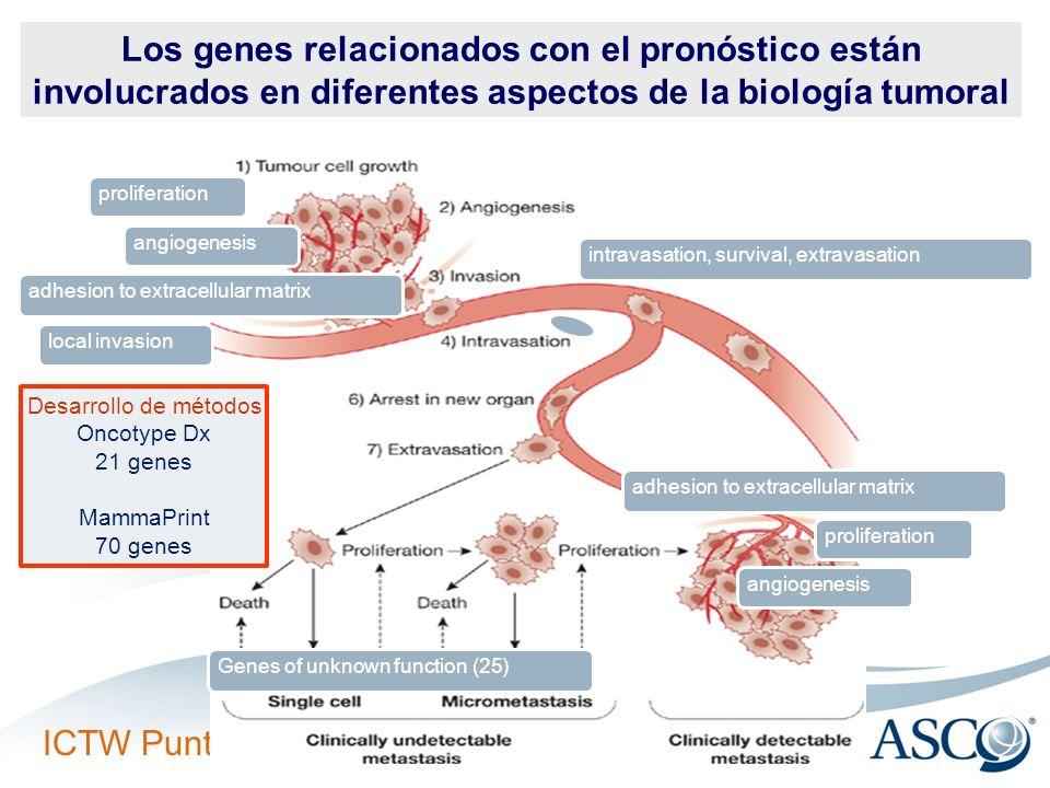 proliferation angiogenesis adhesion to extracellular matrix local invasion intravasation, survival, extravasation proliferation angiogenesis adhesion