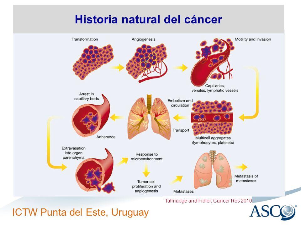 ICTW Punta del Este, Uruguay Historia natural del cáncer Talmadge and Fidler, Cancer Res 2010