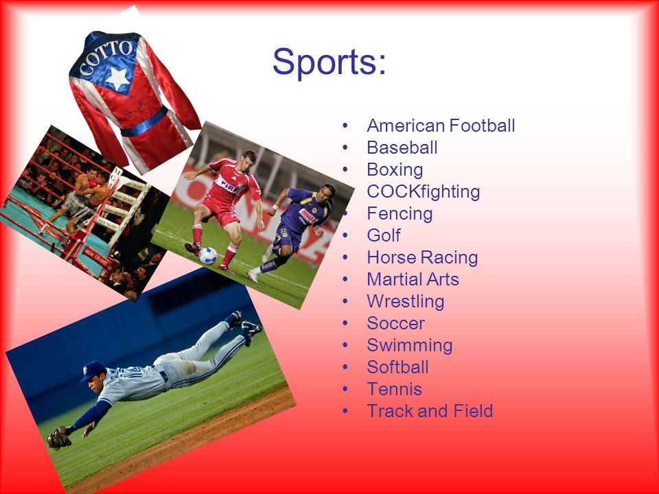 Sports: American Football Baseball Boxing COCKfighting Fencing Golf Horse Racing Martial Arts Wrestling Soccer Swimming Softball Tennis Track and Field