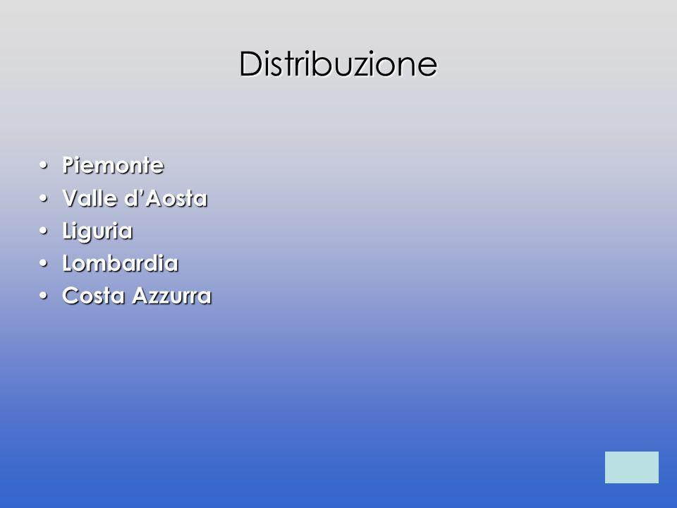 Distribuzione Piemonte Piemonte Valle dAosta Valle dAosta Liguria Liguria Lombardia Lombardia Costa Azzurra Costa Azzurra