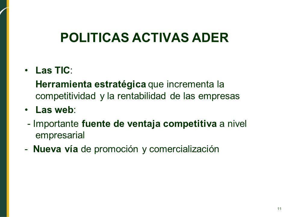 11 POLITICAS ACTIVAS ADER Las TIC: Herramienta estratégica que incrementa la competitividad y la rentabilidad de las empresas Las web: - Importante fu