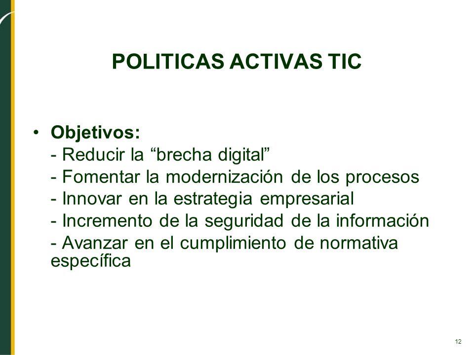 12 POLITICAS ACTIVAS TIC Objetivos: - Reducir la brecha digital - Fomentar la modernización de los procesos - Innovar en la estrategia empresarial - I