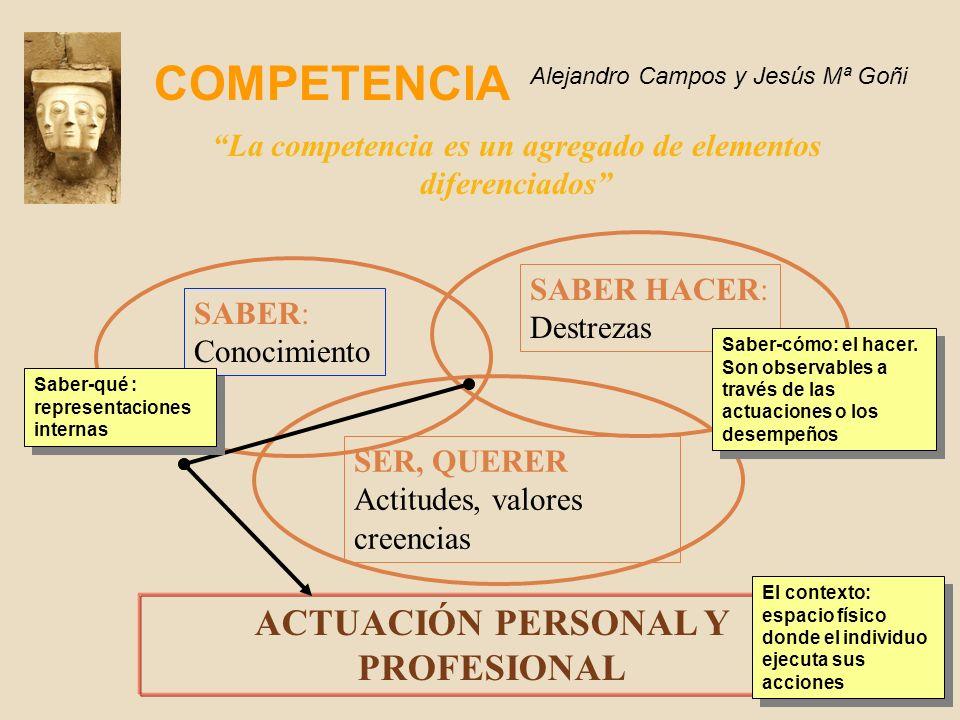 La competencia es un agregado de elementos diferenciados ACTUACIÓN PERSONAL Y PROFESIONAL SABER: Conocimiento SABER HACER: Destrezas SER, QUERER Actitudes, valores creencias Saber-qué : representaciones internas El contexto: espacio físico donde el individuo ejecuta sus acciones Saber-cómo: el hacer.