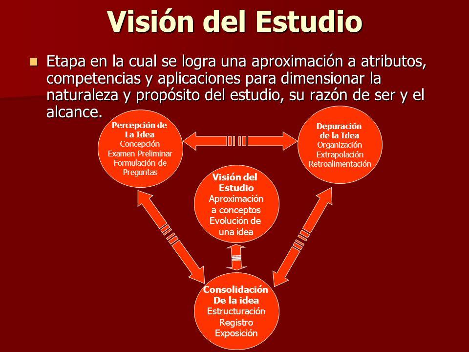 Visión del Estudio Etapa en la cual se logra una aproximación a atributos, competencias y aplicaciones para dimensionar la naturaleza y propósito del