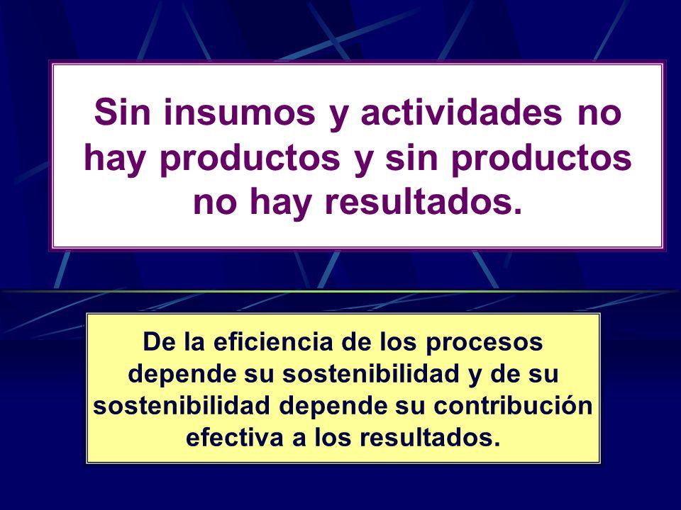 Sin insumos y actividades no hay productos y sin productos no hay resultados. De la eficiencia de los procesos depende su sostenibilidad y de su soste