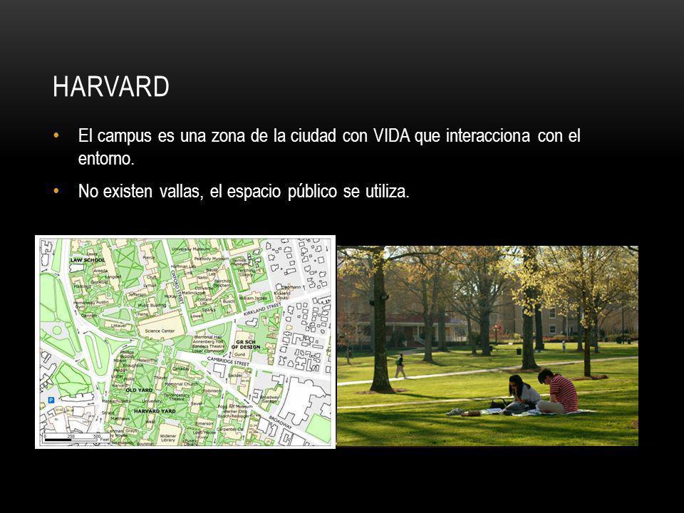 HARVARD El campus es una zona de la ciudad con VIDA que interacciona con el entorno. No existen vallas, el espacio público se utiliza.