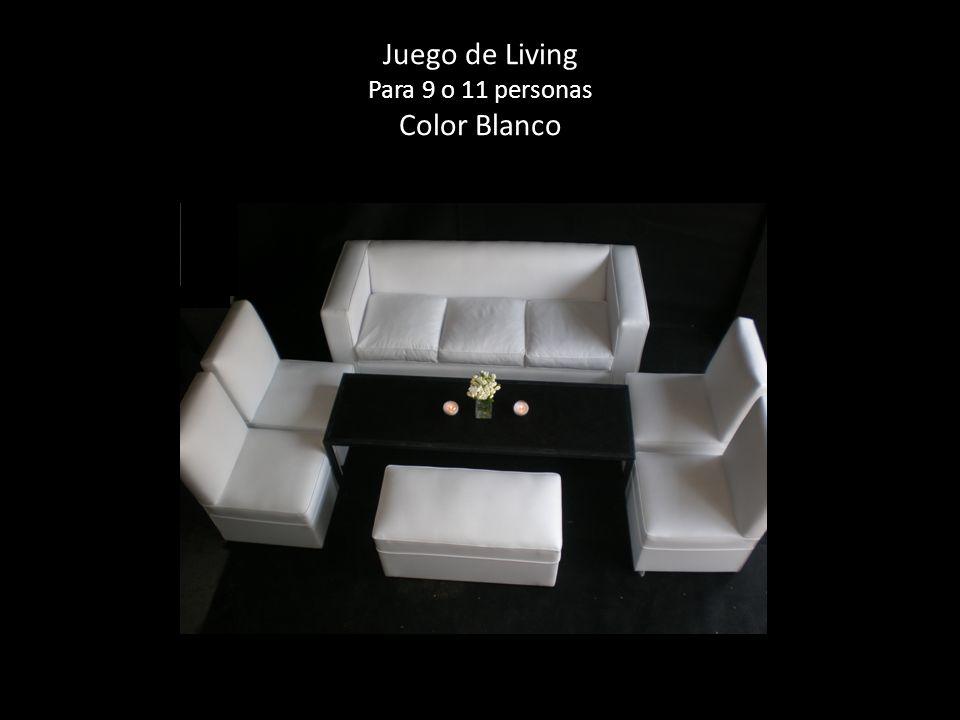 Juego de Living Para 9 o 11 personas Color Blanco