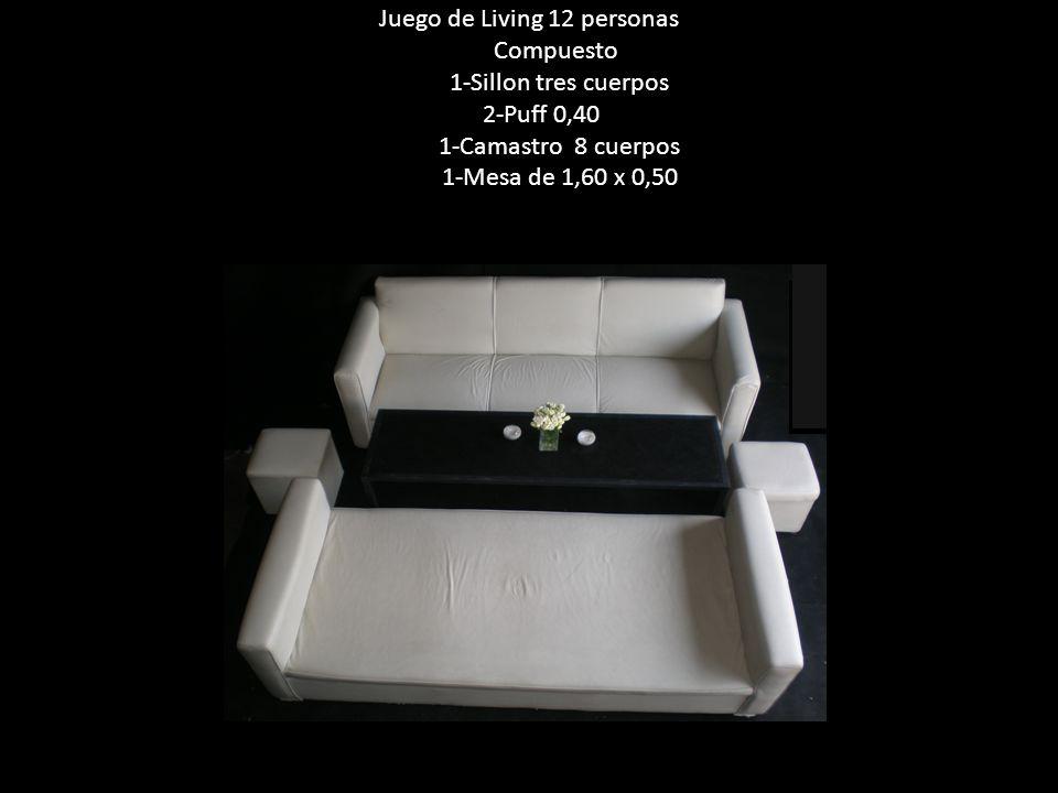 Juego de Living 12 personas Compuesto 1-Sillon tres cuerpos 2-Puff 0,40 1-Camastro 8 cuerpos 1-Mesa de 1,60 x 0,50