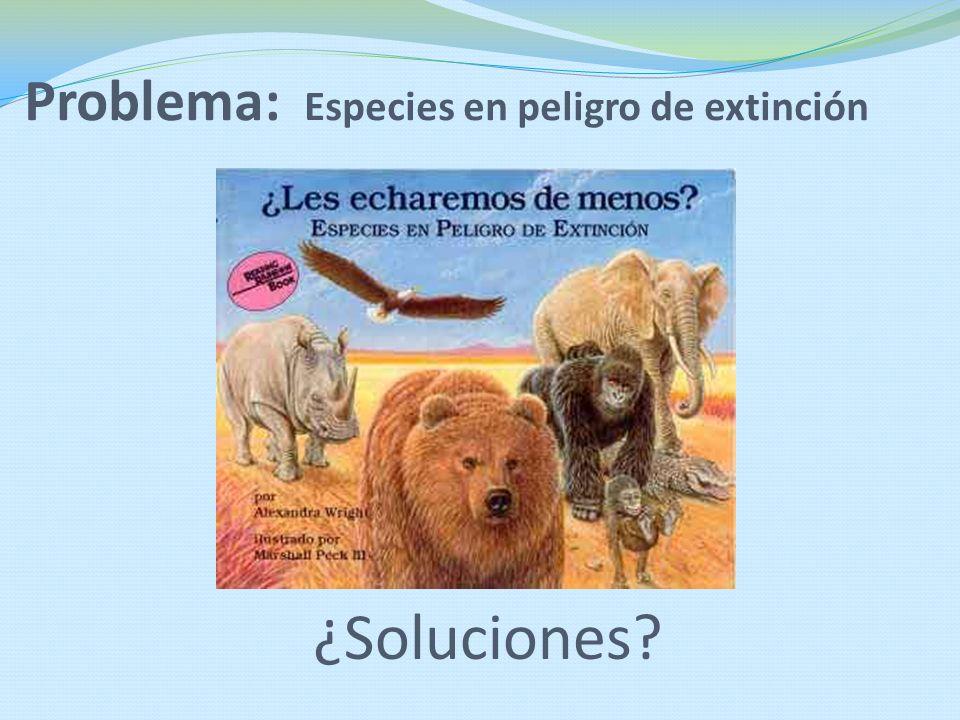 Problema: Especies en peligro de extinción ¿Soluciones?