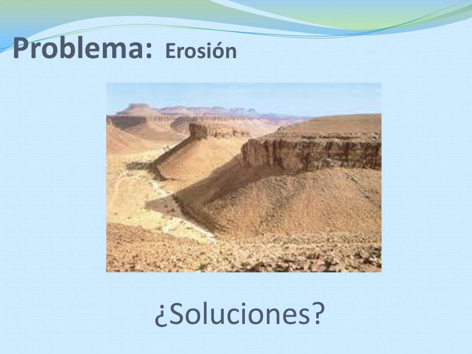 Problema: Erosión ¿Soluciones?
