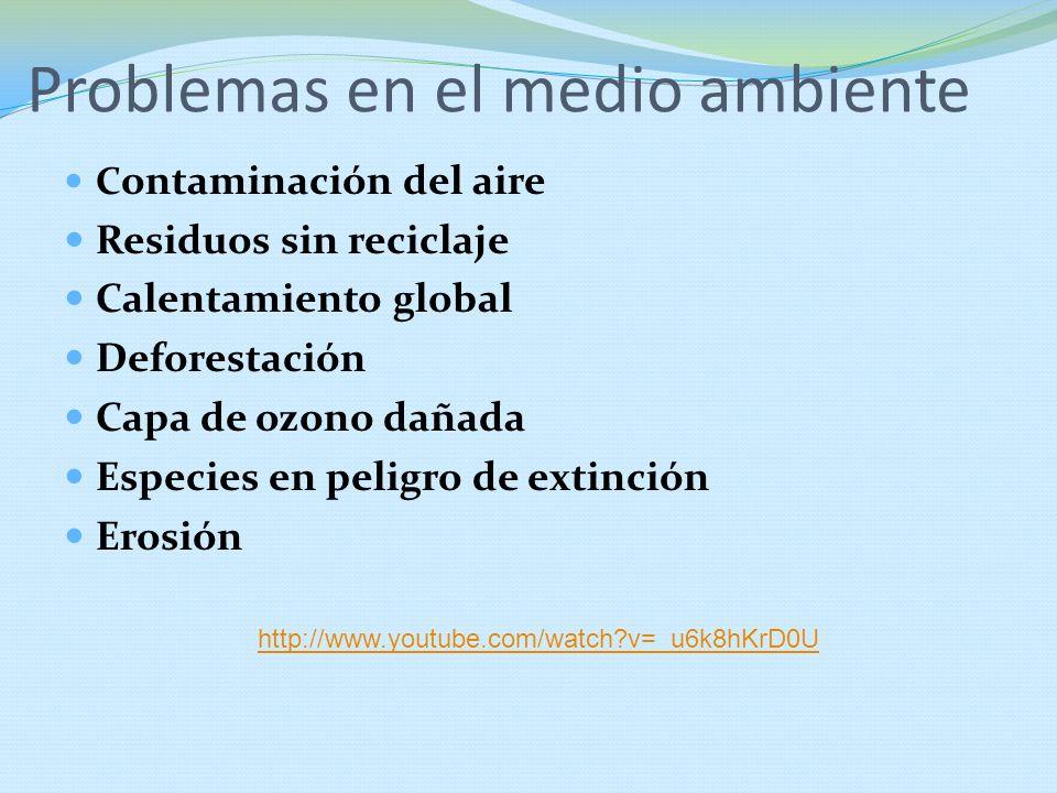 Problemas en el medio ambiente C ontaminación del aire Residuos sin reciclaje Calentamiento global Deforestación Capa de ozono dañada Especies en peli