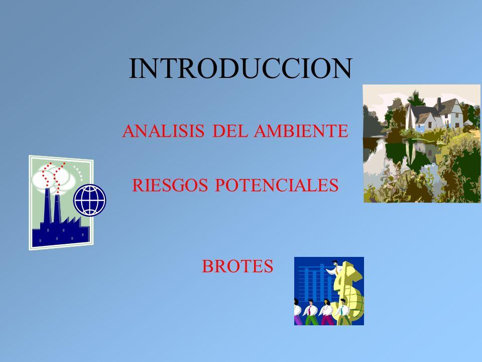 INTRODUCCION ANALISIS DEL AMBIENTE RIESGOS POTENCIALES BROTES
