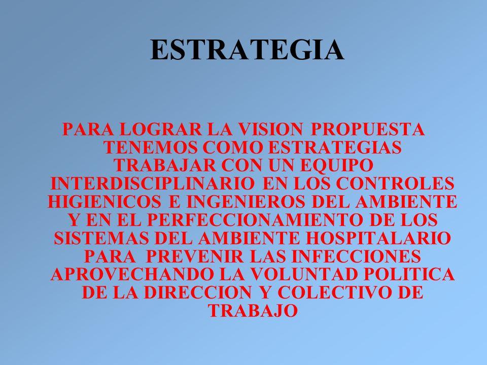 ESTRATEGIA PARA LOGRAR LA VISION PROPUESTA TENEMOS COMO ESTRATEGIAS TRABAJAR CON UN EQUIPO INTERDISCIPLINARIO EN LOS CONTROLES HIGIENICOS E INGENIEROS