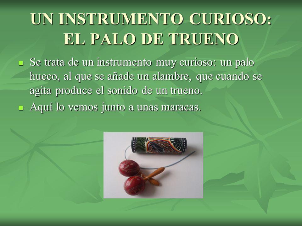 UN INSTRUMENTO CURIOSO: EL PALO DE TRUENO Se trata de un instrumento muy curioso: un palo hueco, al que se añade un alambre, que cuando se agita produce el sonido de un trueno.