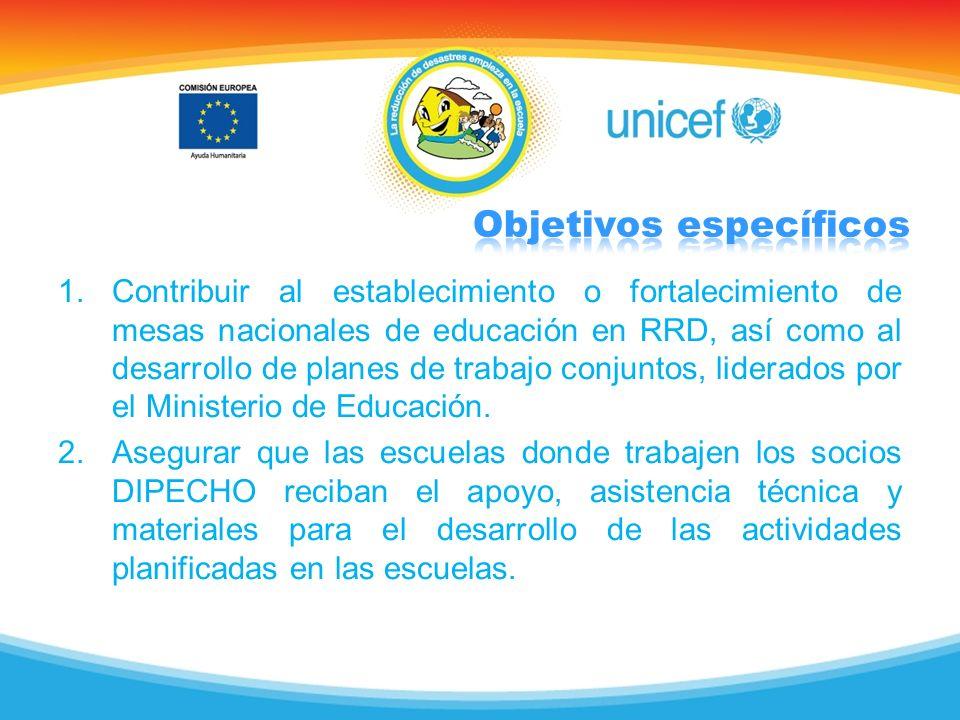 1.Contribuir al establecimiento o fortalecimiento de mesas nacionales de educación en RRD, así como al desarrollo de planes de trabajo conjuntos, lide