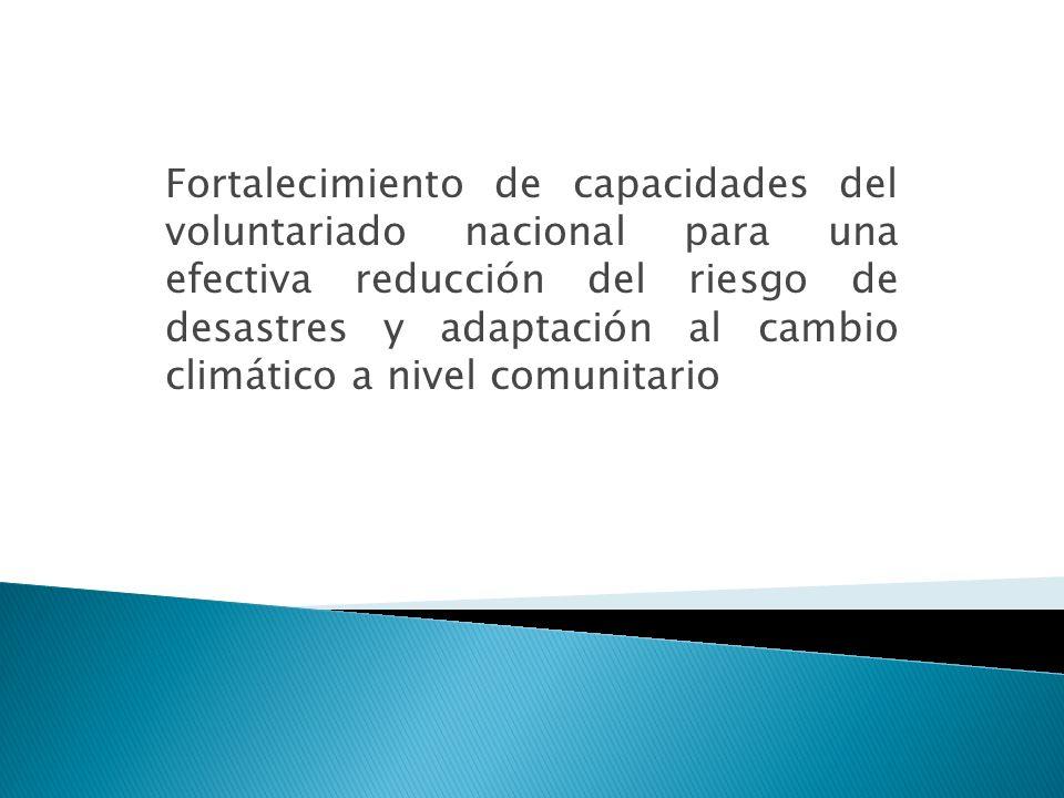 Fortalecimiento de capacidades del voluntariado nacional para una efectiva reducción del riesgo de desastres y adaptación al cambio climático a nivel