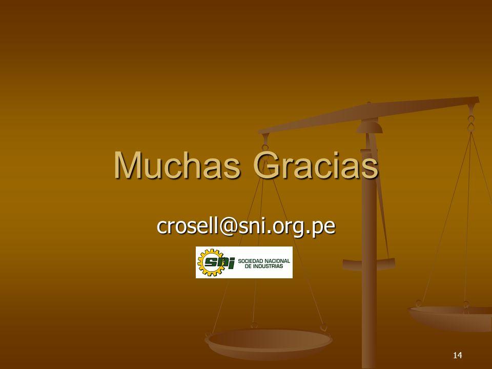 14 Muchas Gracias crosell@sni.org.pe