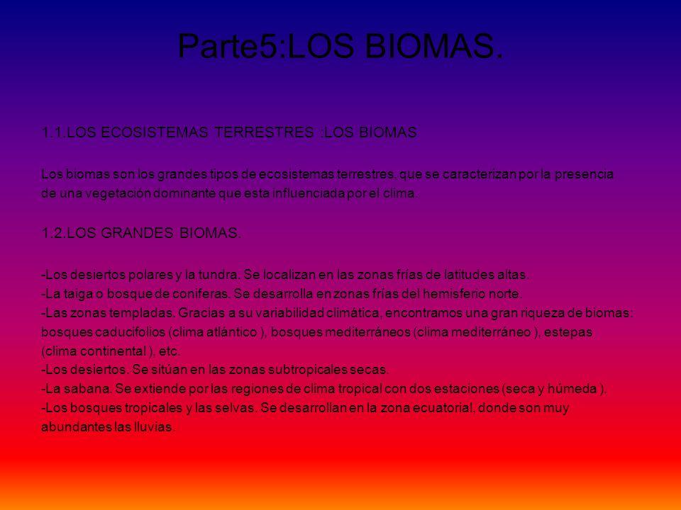 Parte5:LOS BIOMAS. 1.1.LOS ECOSISTEMAS TERRESTRES :LOS BIOMAS Los biomas son los grandes tipos de ecosistemas terrestres, que se caracterizan por la p