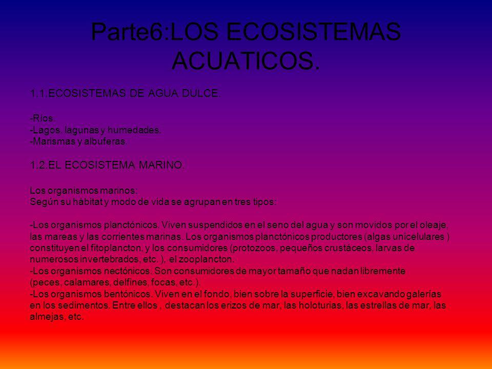 Parte6:LOS ECOSISTEMAS ACUATICOS. 1.1.ECOSISTEMAS DE AGUA DULCE. -Ríos. -Lagos, lagunas y humedades. -Marismas y albuferas. 1.2.EL ECOSISTEMA MARINO.