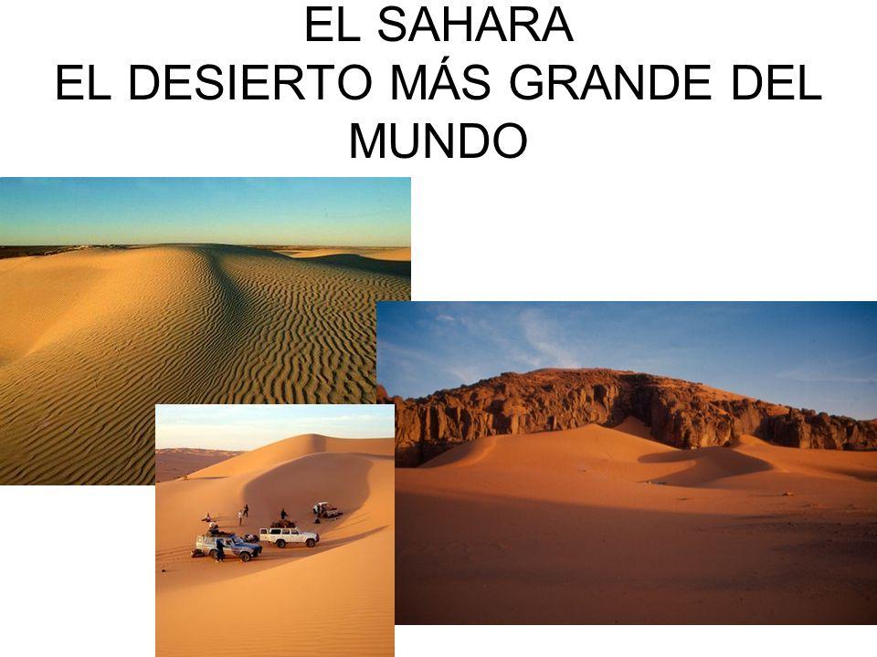 EL SAHARA EL DESIERTO MÁS GRANDE DEL MUNDO