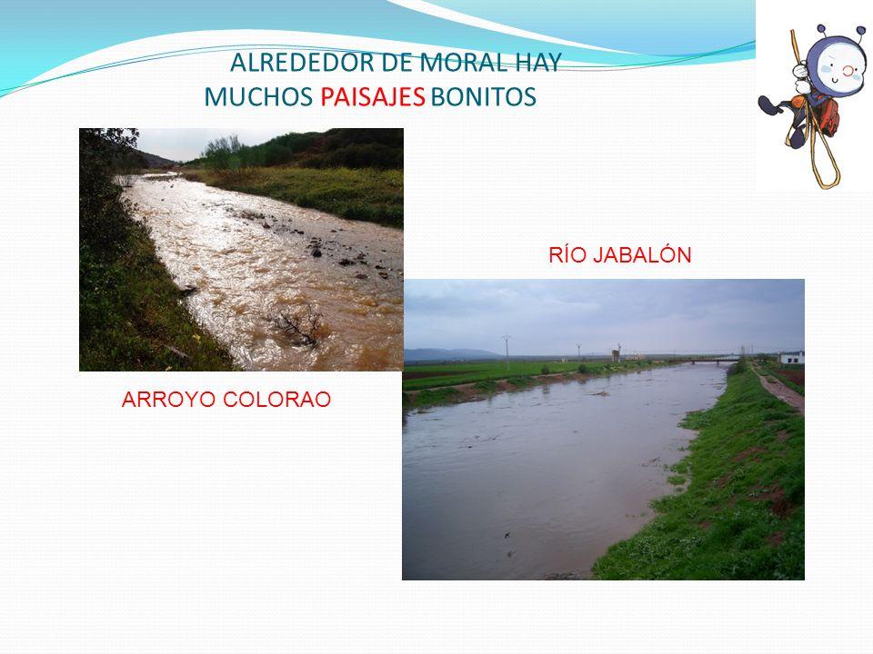 ALREDEDOR DE MORAL HAY MUCHOS PAISAJES BONITOS ARROYO COLORAO RÍO JABALÓN