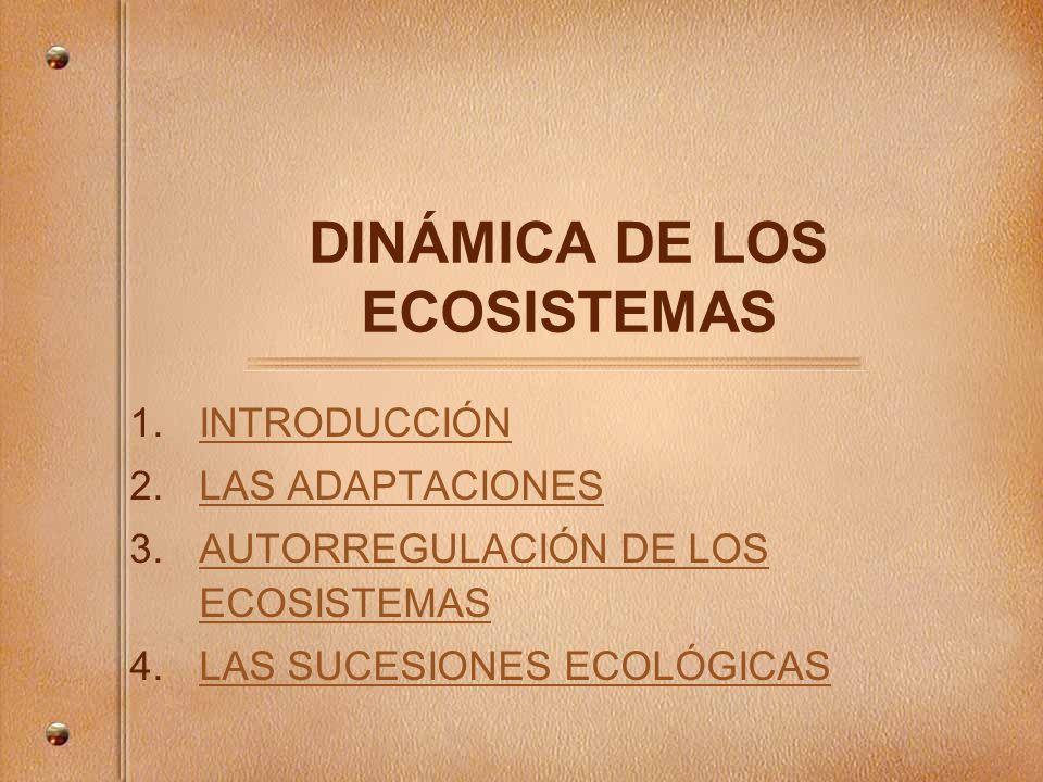 1.INTRODUCCIÓNINTRODUCCIÓN 2.LAS ADAPTACIONESLAS ADAPTACIONES 3.AUTORREGULACIÓN DE LOS ECOSISTEMASAUTORREGULACIÓN DE LOS ECOSISTEMAS 4.LAS SUCESIONES ECOLÓGICASLAS SUCESIONES ECOLÓGICAS DINÁMICA DE LOS ECOSISTEMAS