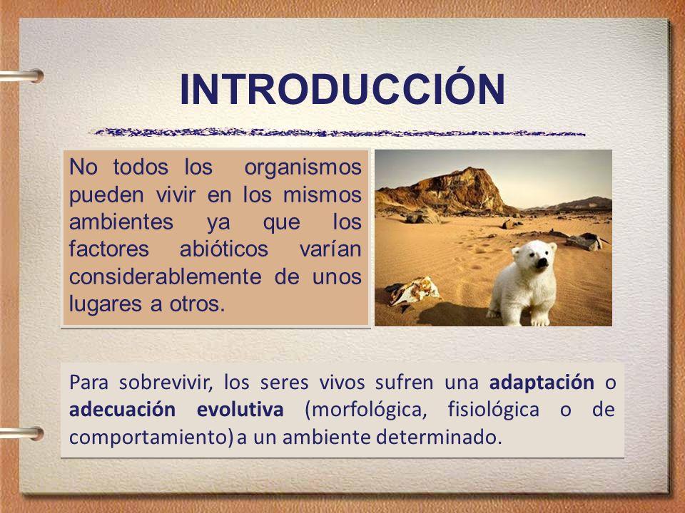 INTRODUCCIÓN Para sobrevivir, los seres vivos sufren una adaptación o adecuación evolutiva (morfológica, fisiológica o de comportamiento) a un ambiente determinado.