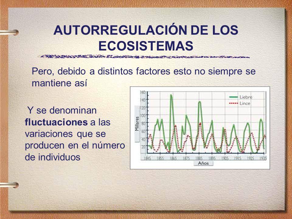 AUTORREGULACIÓN DE LOS ECOSISTEMAS Y se denominan fluctuaciones a las variaciones que se producen en el número de individuos Pero, debido a distintos factores esto no siempre se mantiene así
