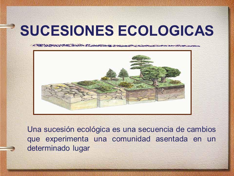 SUCESIONES ECOLOGICAS Una sucesión ecológica es una secuencia de cambios que experimenta una comunidad asentada en un determinado lugar